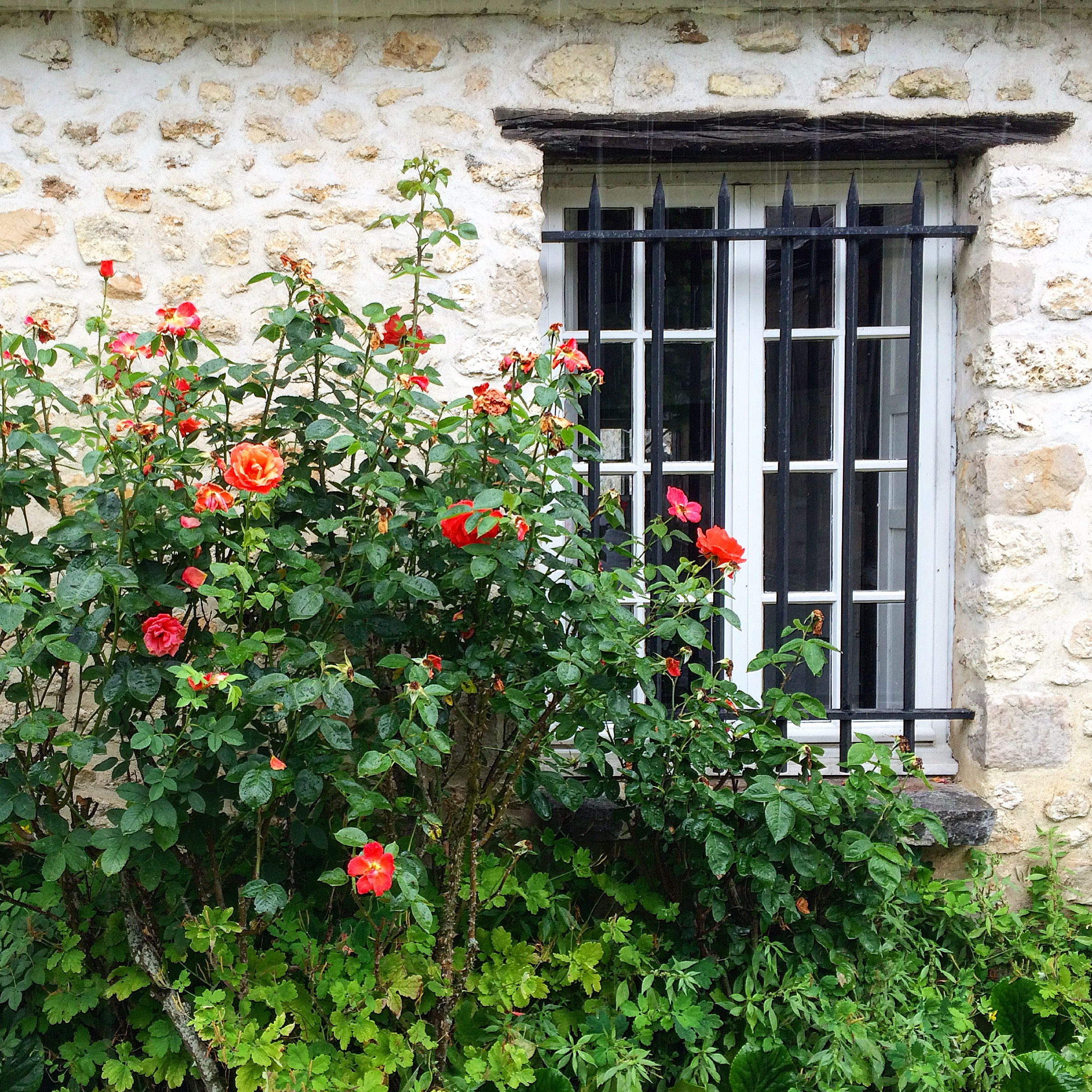 Life in the French Countryside: Our Village of Courances